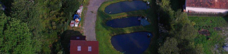 Výlovy vodních nádrží
